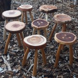 Handcrafted Wych Elm Stool with Wild Cherry Legs